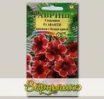 Глоксиния Аванти Красная с Белым краем F1, 5 шт.