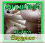 Мицелий зерновой Вешенка Белый эльф, 150 мл