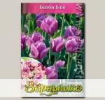 Тюльпан ботанический BABY BLUE, 10 шт.