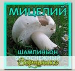 Мицелий зерновой Шампиньон Белоснежный, 150 мл