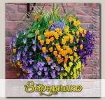 Кашпо пластиковое подвесное Прекрасный цветочный шар, 6 ячеек, черное