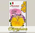 Виола Виттрока Бейби Пикоти F1, 10 шт. Farao Итальянские сорта и гибриды