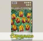 Тюльпан простой поздний HELMAR, 8 шт.