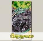 Базилик Ереванский Сапфир, 0,3 г Семена от автора