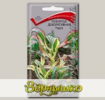 Кукуруза декоративная Радуга, 1 г