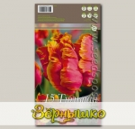 Тюльпан попугайный AMAZING PARROT, 5 шт.