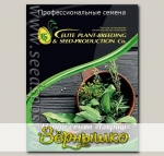 Набор семян Грузинские травы Элит мини, 9 пакетиков Профессиональная упаковка