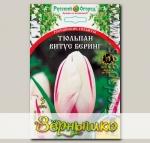 Тюльпан простой поздний ВИТУС БЕРИНГ, 5 шт. Эксклюзив (Российские гиганты)