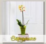 Кашпо Волна орхидейная Желтый, 1,3 л