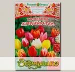 Тюльпан простой ранний ТРИУМФАТОР СМЕСЬ, 5 шт.