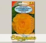 Бегония крупноцветковая Камелия Желтая, 10 шт.