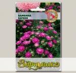 Астра китайская Бамбина Кармин, 40 шт.