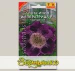 Глоксиния Императрица Пурпурная F1, 5 шт.
