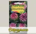 Капуста декоративная Бордовое кружево, 0,1 г