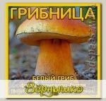 Грибница субстрат микоризный Белый гриб Оливково-бурый, 1 л