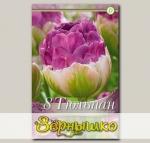 Тюльпан махровый поздний EXQUISIT, 8 шт. NEW