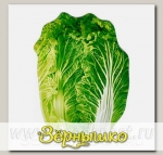 Блюдо сервировочное Walmer Colourful Greenery, 15х21 см