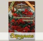 Бегония ампельная Иллюминейшн Скарлет F1, 8 шт. Platinum