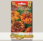 Цинния Персидский ковер, Смесь, 25 шт.