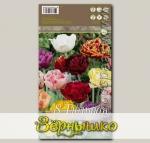 Тюльпан махровый поздний MIXED, 8 шт.