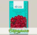 Гвоздика турецкая Барбарини Красная, 0,01 г