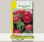 Цинния изящная Циннита Розовый, 10 шт. Семена из Германии