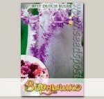 Тюльпан бахромчатый ARIA CARD, 7 шт.