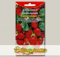 Клубника ампельная крупноплодная Темптейшн F1, 10 шт.