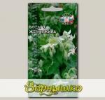 Бораго Жемчужина (огуречная трава), 1 г