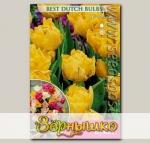 Тюльпан махровый поздний HOLLAND BOUQUET, 5 шт.