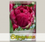 Тюльпан махровый ранний ROYAL ACRES, 8 шт.