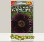 Глоксиния Императрица Фиолетовая F1, 5 шт.