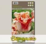 Тюльпан бахромчатый BALLROOM, 5 шт.