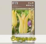 Тюльпан лилиецветный JOHAN CRUIJFF, 8 шт.