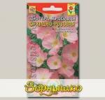 Энотера красивая Орхидно-розовая, 0,05 г