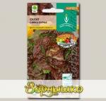 Салат листовой Сивка-бурка, 1 г Эксклюзивные сорта