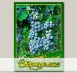 Голубика Высокорослая «BlueСrop», 0,01 г (? 50 шт.)