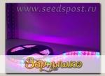 Светодиодная фитолента для досветки растений влагозащищенная IP65, 72 Вт, 5 метров