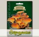 Гриб Опенок Зимний на древесной палочке, 12 шт.