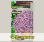 Лобелия ампельная Регатта Лиловый Водопад, 8 шт. PanAmerican Seeds Ампельные Шедевры