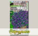 Броваллия ампельная Великолепная Синие Колокольчики, 10 шт. PanAmerican Seeds Ампельные Шедевры