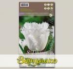 Тюльпан бахромчатый HONEYMOON, 8 шт.