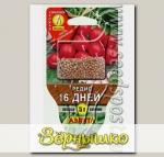 Редис 16 дней ® в СЕЯЛКЕ, 5 г