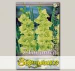Гладиолус крупноцветковый GREEN STAR, 7 шт.