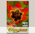 Тюльпан ботанический LITTLE PRINCESS, 10 шт. NEW