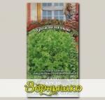 Салат Кредо, 0,5 г Урожай на окне