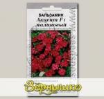 Бальзамин Акцент Малиновый, 10 шт. Профессиональные семена