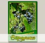 Виноград Приречный, 0,5 г (? 15 шт.)