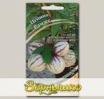 Пепино Рамзес, 5 шт. Семена от автора