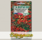 Виноград девичий триостренный Нептун, 5 шт.